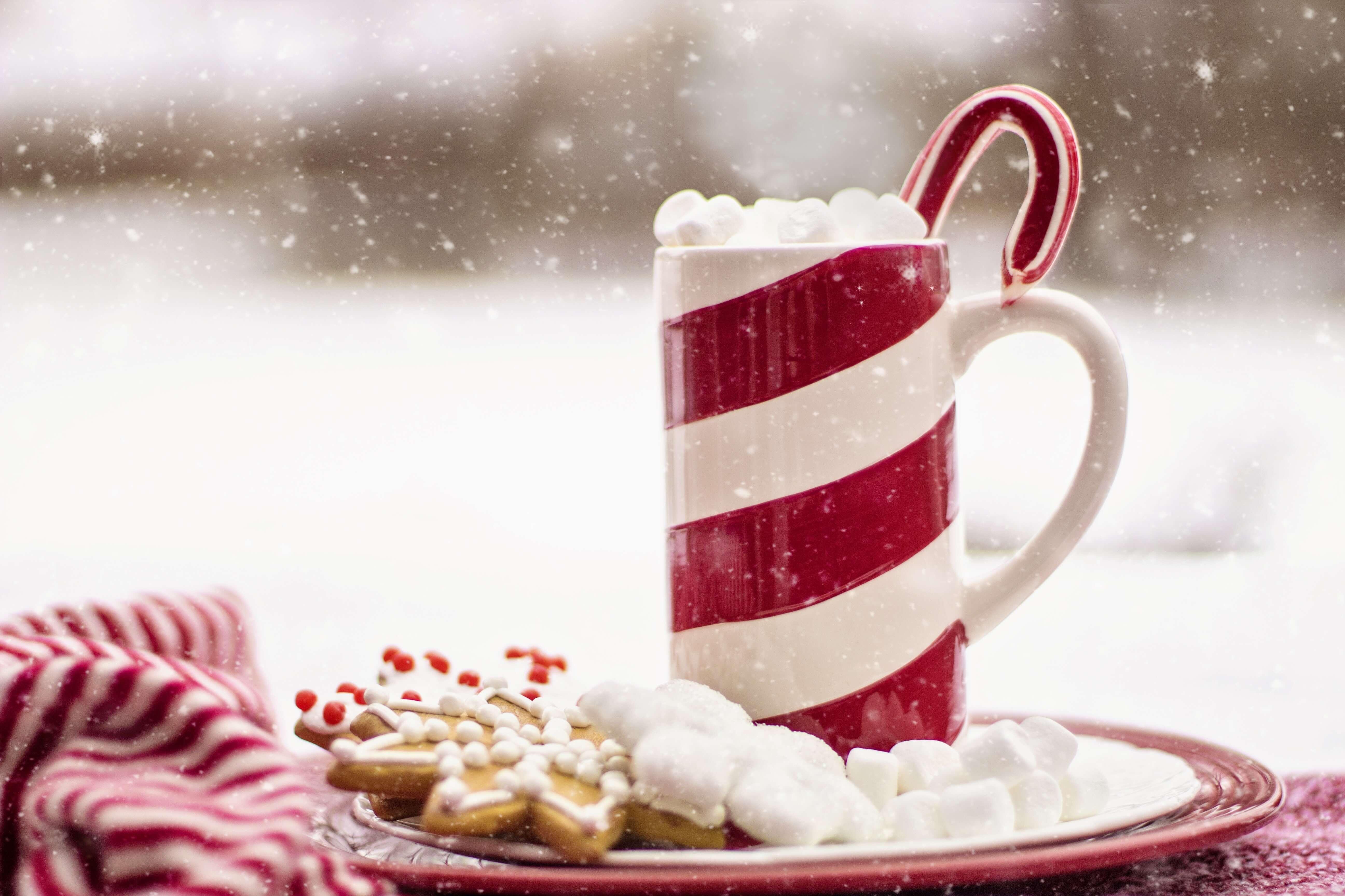 Über Weihnachten nicht zu nehmen. So kommst du schlank und gesund durch die Weihnachtszeit.